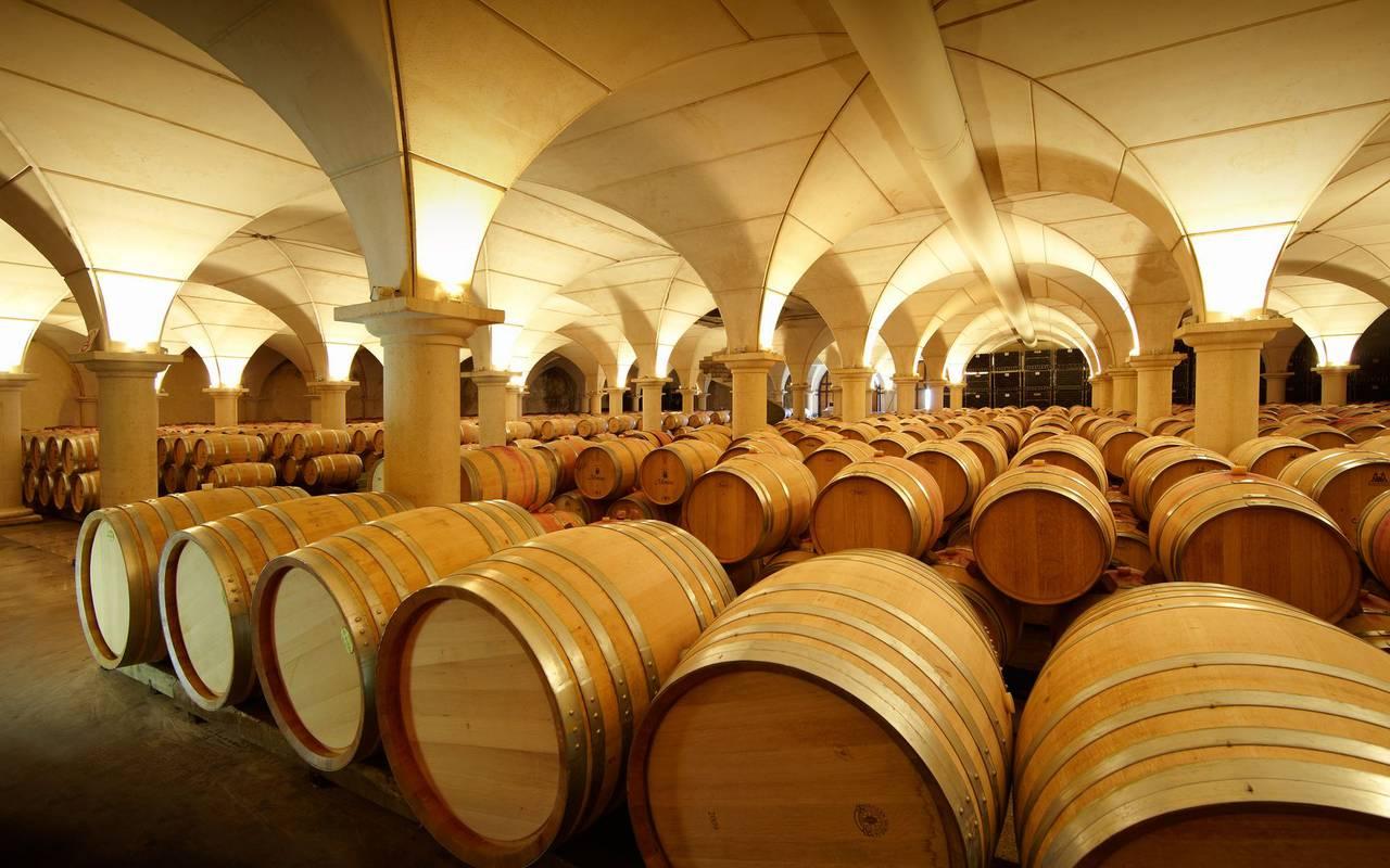 Cellar, Lourdes activities, Hôtels Vinuales